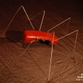 Ant Red Phone 02